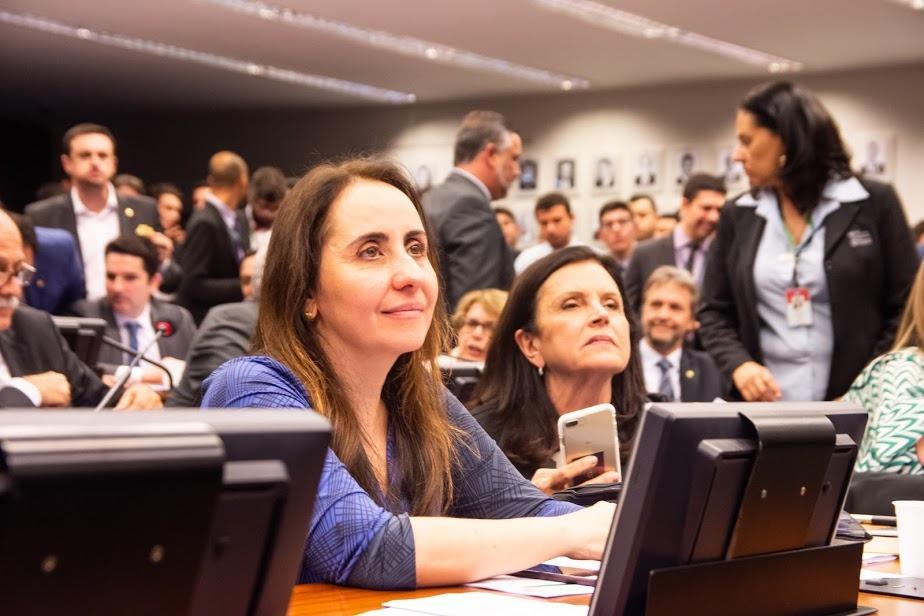 Deputada Adriana Ventura em Comissão