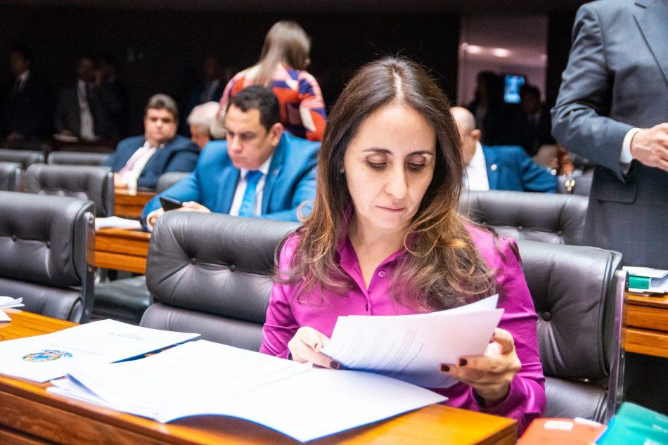 Deputada Federal Adriana Ventura no plenário
